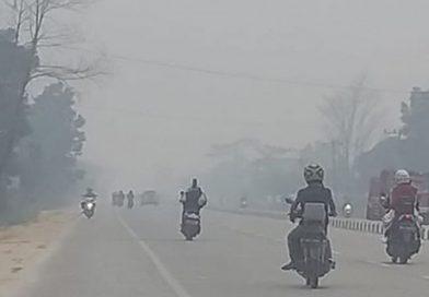 Kualitas Udara Pekanbaru, Riau Masuk Level Berbahaya